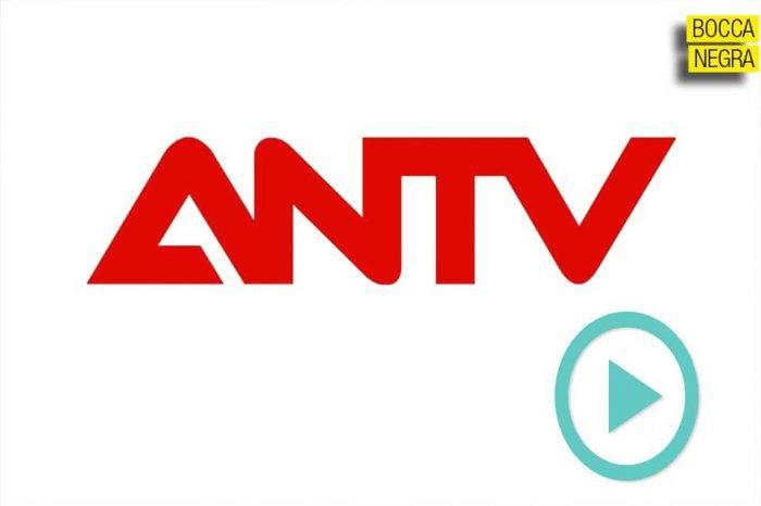 ANTV y la AN son una vergüenza, por Sebastián Boccanegra