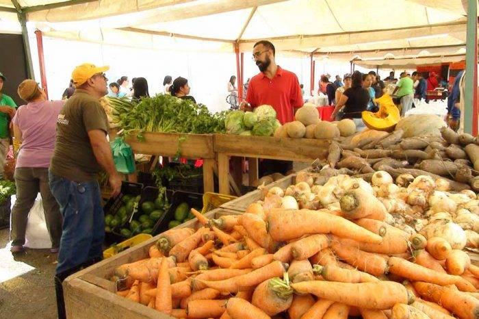 GN garantizará protección a transportes de vegetales para evitar saqueos