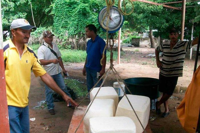 Sacar pan y queso de Yaracuy se castigará con 18 años de cárcel