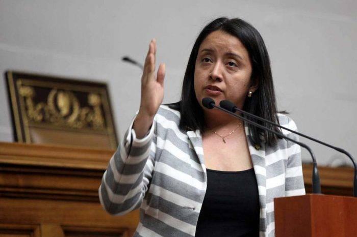 Sebin tendría orden de captura contra la diputada Gaby Arellano