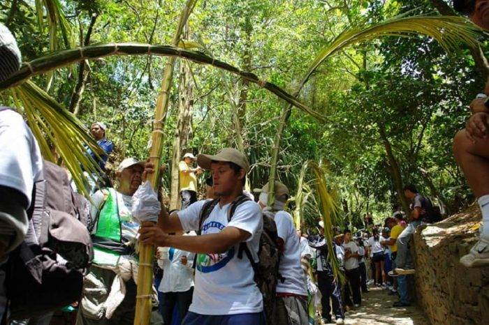 Palmeros de Chacao declarados Patrimonio Cultural Inmaterial de la Humanidad