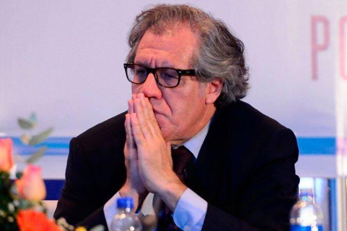 LUIS ALMAGRO.