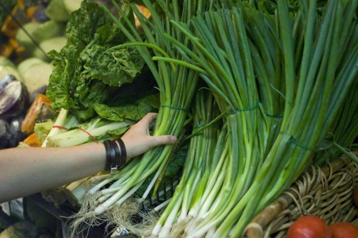 """Pequiven, el """"milagro"""" que salvaría la producción de hortalizas"""