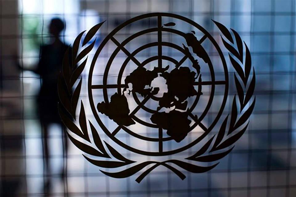 Expertos ONU