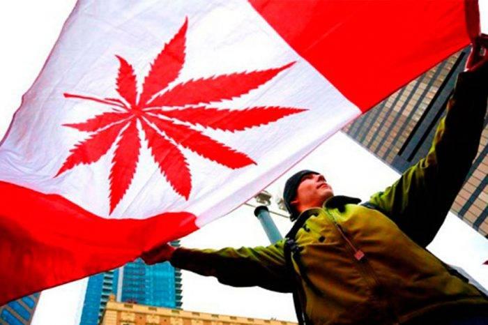 Senado de Canadá aprobó la legalización de la marihuana