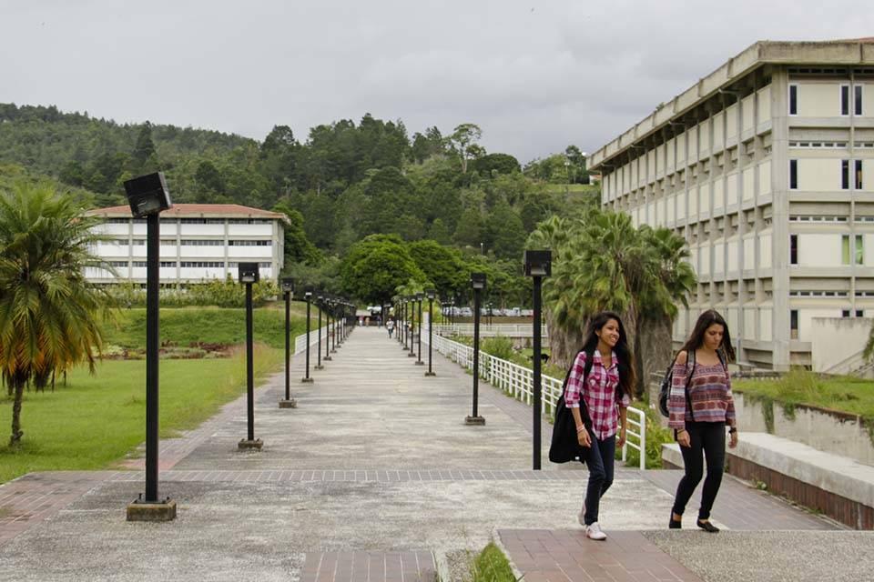 Jugar al desgaste: otra estocada oficial contra las universidades