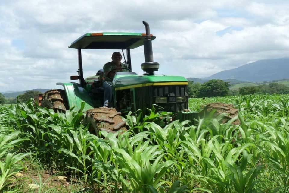 cAMPO FAO productores agropcuarios