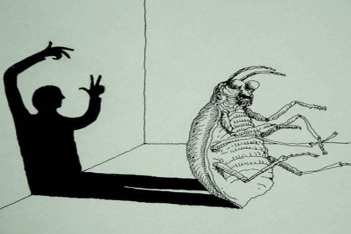 La Metamorfosis, por Walter Boza