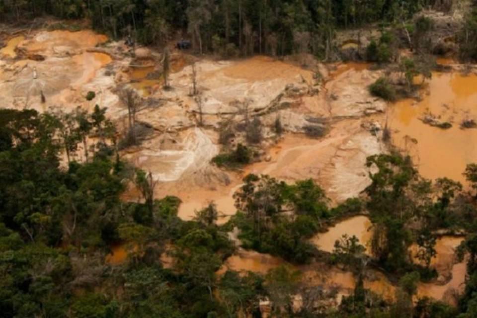 94% de los puntos de minería ilegal del país están en el estado Bolívar