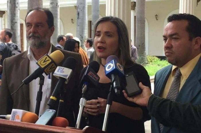 """Diputada denuncia """"toque de queda"""" impuesto por grupos irregulares en Táchira"""