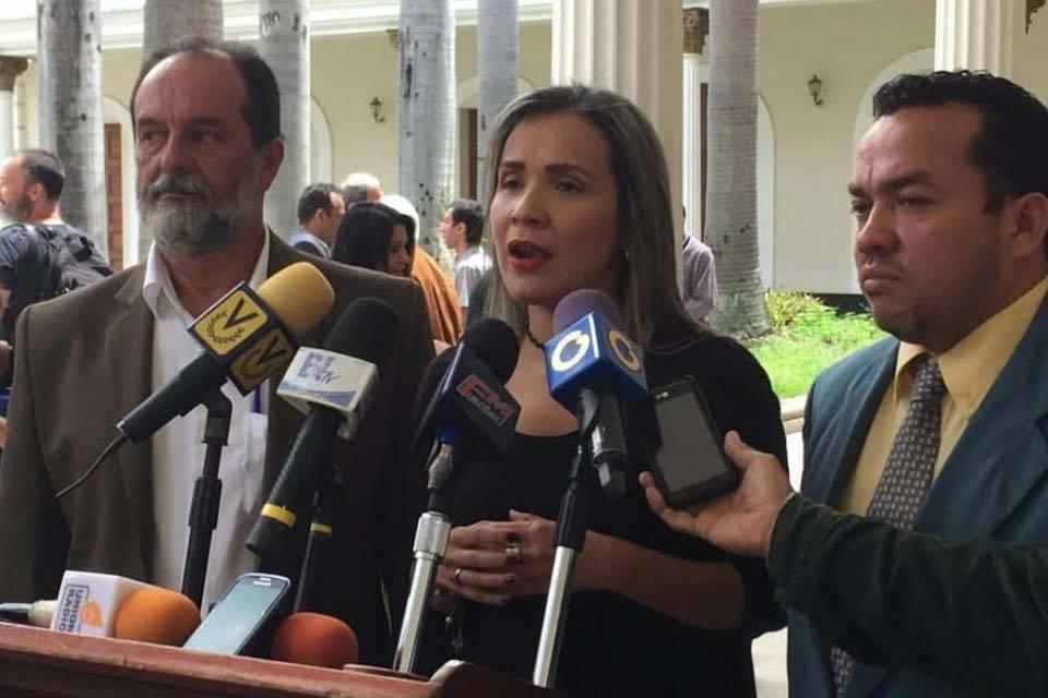 Karim Vera Ezequiel Pérez Franklyn Duarte Primero Justicia