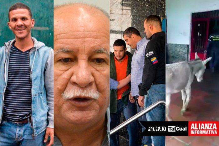 Casi 99% de las detenciones en las que se persigue a políticos son arbitrarias (II)