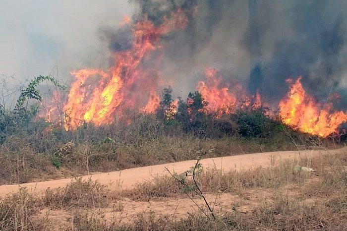 Arde la Amazonía: se estima que unas 500.000 hectáreas han sido destruidas