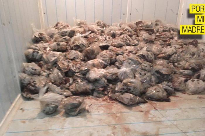 En el hospital Luis Razetti guardan pescado en cavas de muertos