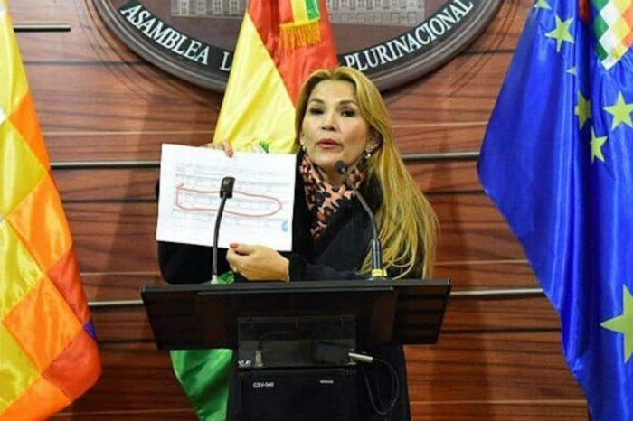 """Vicepresidenta del Senado de Bolivia convoca sesión para """"elegir a la cabeza del Estado"""""""