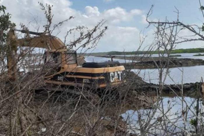Diputado Sirit: Ecocidio en Refugio de Cuare es un crimen sin precedentes