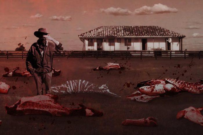 Armando.Info: un matadero a cielo abierto y del tamaño de un país