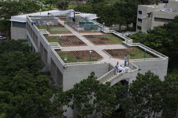 UCAB inaugura primer techo verde universitario en Venezuela