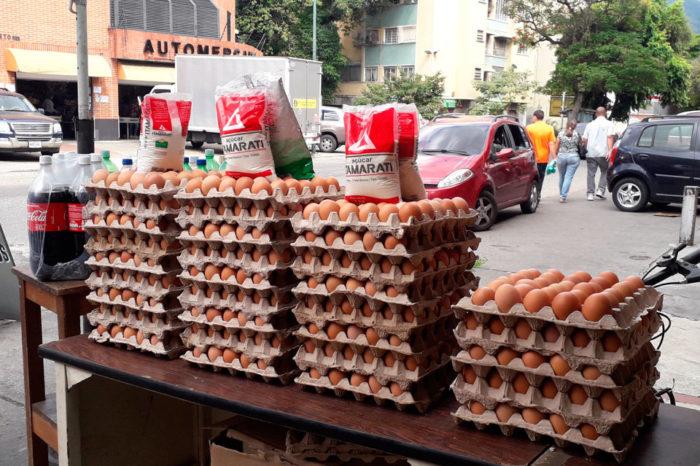 Aumenta producción de huevos