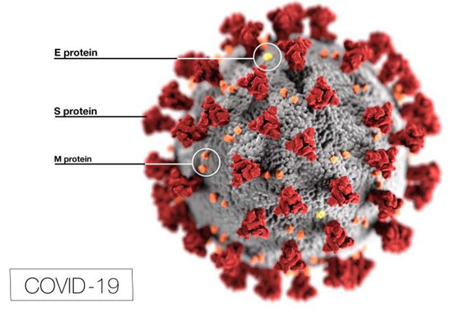 Confirman que el coronavirus ya estaba en Italia en diciembre de 2019