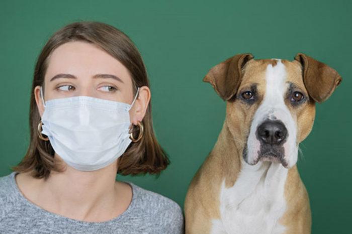¿Los animales domésticos son una amenaza para la propagación de covid-19?