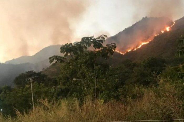 Incendios en el parque nacional Henri Pittier superan las 72 horas