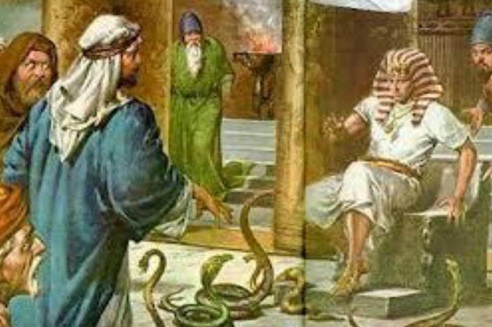 Plagas bíblicas, por Marco Negrón
