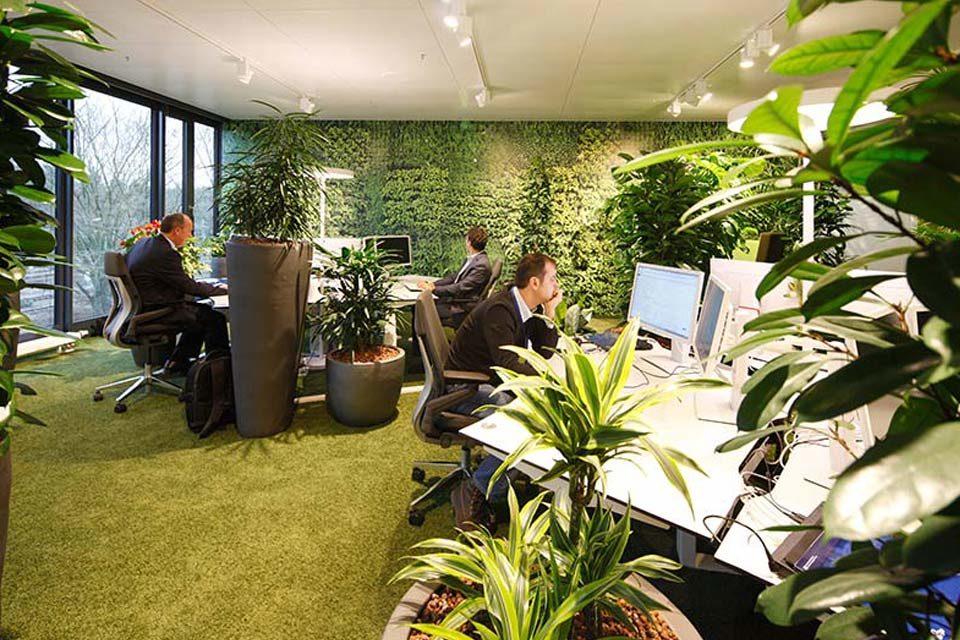 Empresas visten de verde