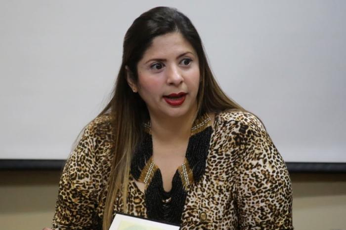Nora Bracho - diputada an - comisión de medios