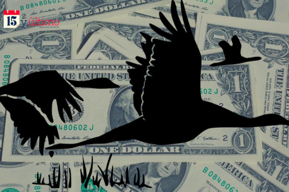 El vuelo de los cisnes negros