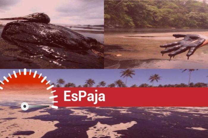 EsPaja | ¿Fotos de costas llenas de petróleo corresponden al derrame de El Palito?