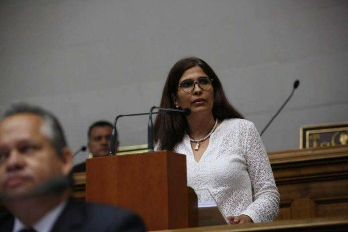 Comisión de Ambiente Asamblea Nacional Diputada Hernández