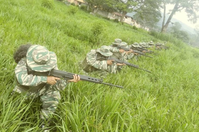 Inclusión de la milicia en nueva Constitución será corolario de un plan iniciado en 2005