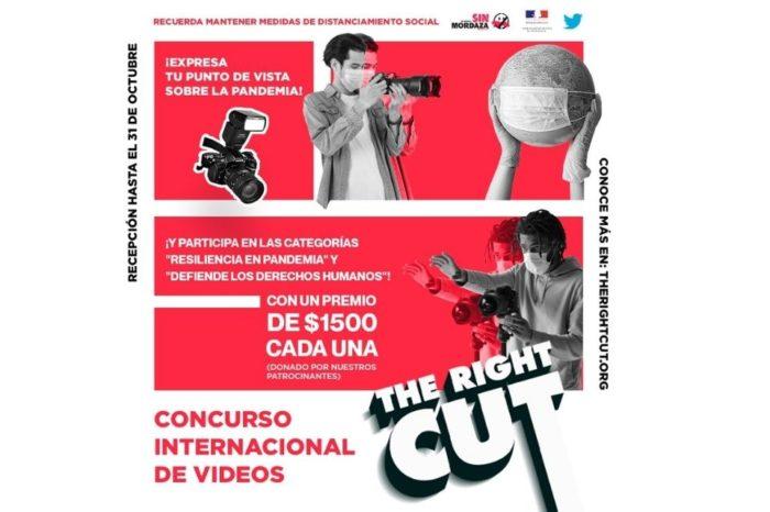 Convocado premio de videos sobre la pandemia y defensa de derechos humanos