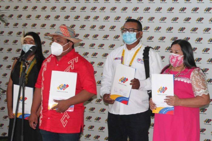 Diputados indígenas CNE