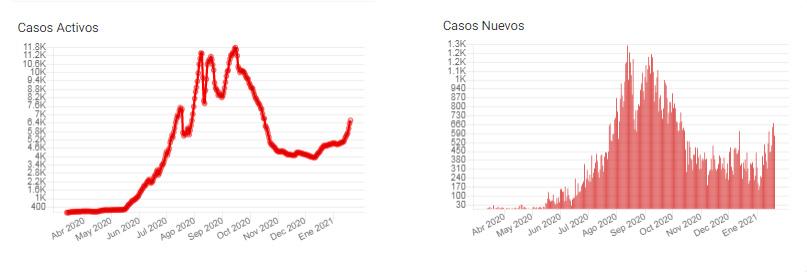 gráfico oficial covid