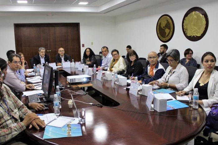 Reunión OPS y Ministerio sobre vacunación covid-19