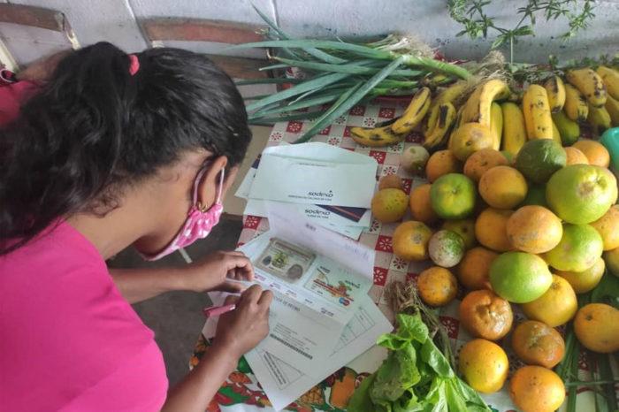 Programa de transferencias de la FAO