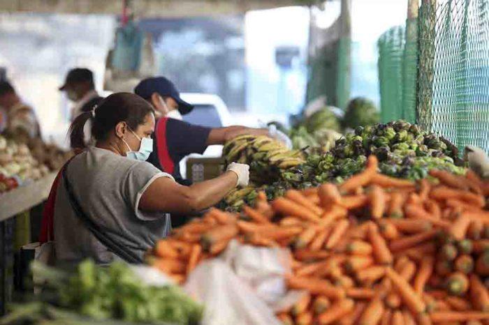escasez de gasoil - hortalizas