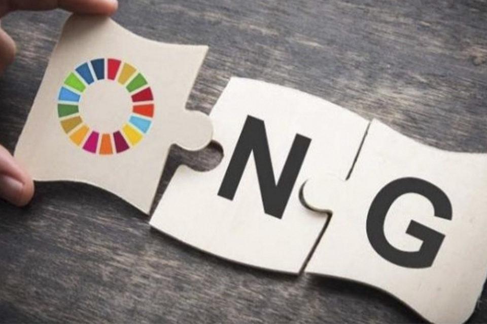 ONG internacionales
