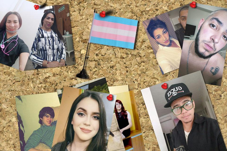 Cambio de género