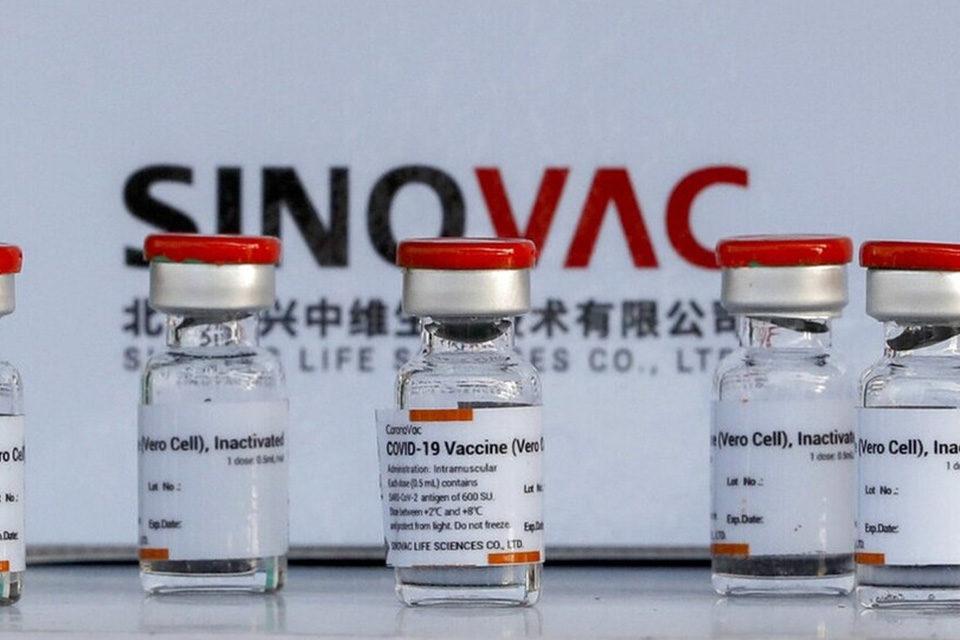 Vacunas Sinovac Covax