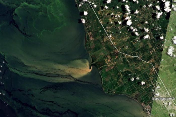 Costa oriental del lago derrame crudo 23.08.2021