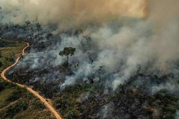 El desmantelamiento de la política ambiental de Bolsonaro