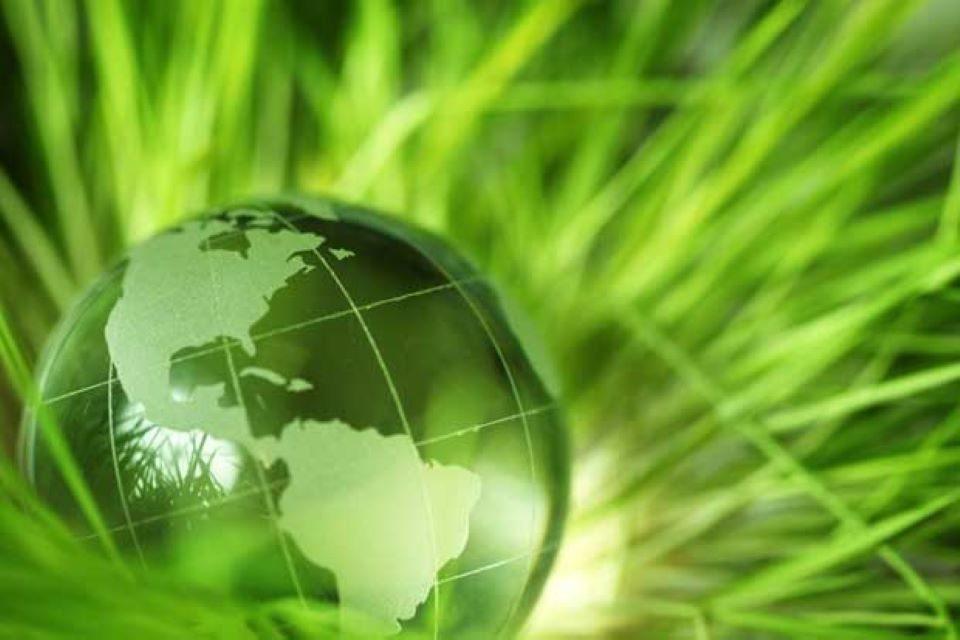 Soñar, pensar y actuar verde
